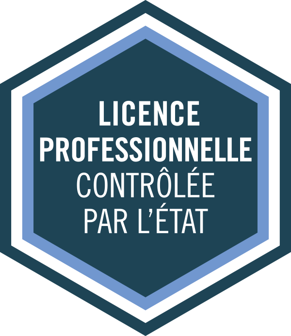 Licence profesionnelle